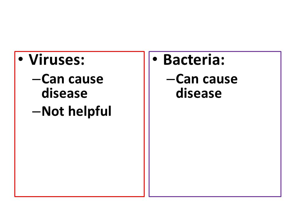 Viruses: Can cause disease Not helpful Bacteria: Can cause disease