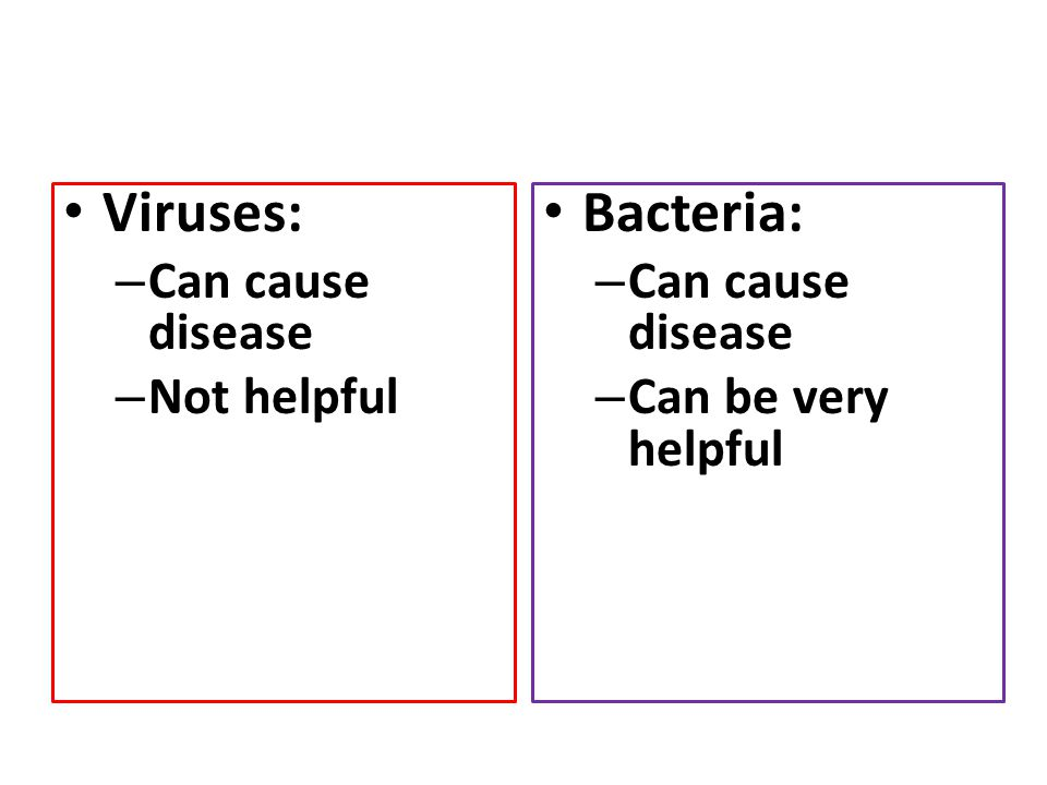 Viruses: Bacteria: Can cause disease Not helpful Can cause disease