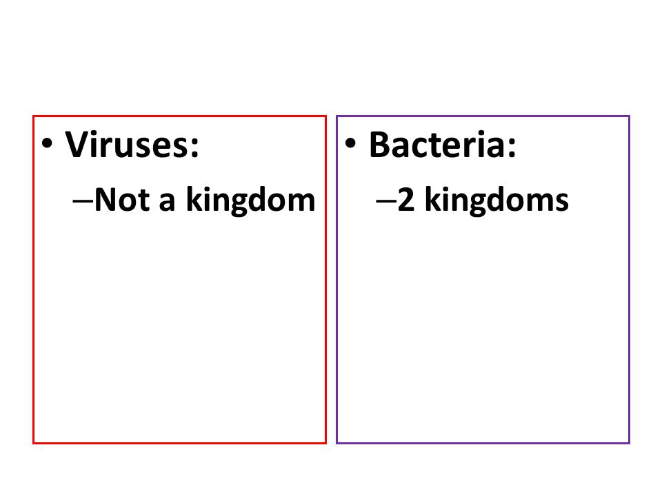 Viruses: Not a kingdom Bacteria: 2 kingdoms
