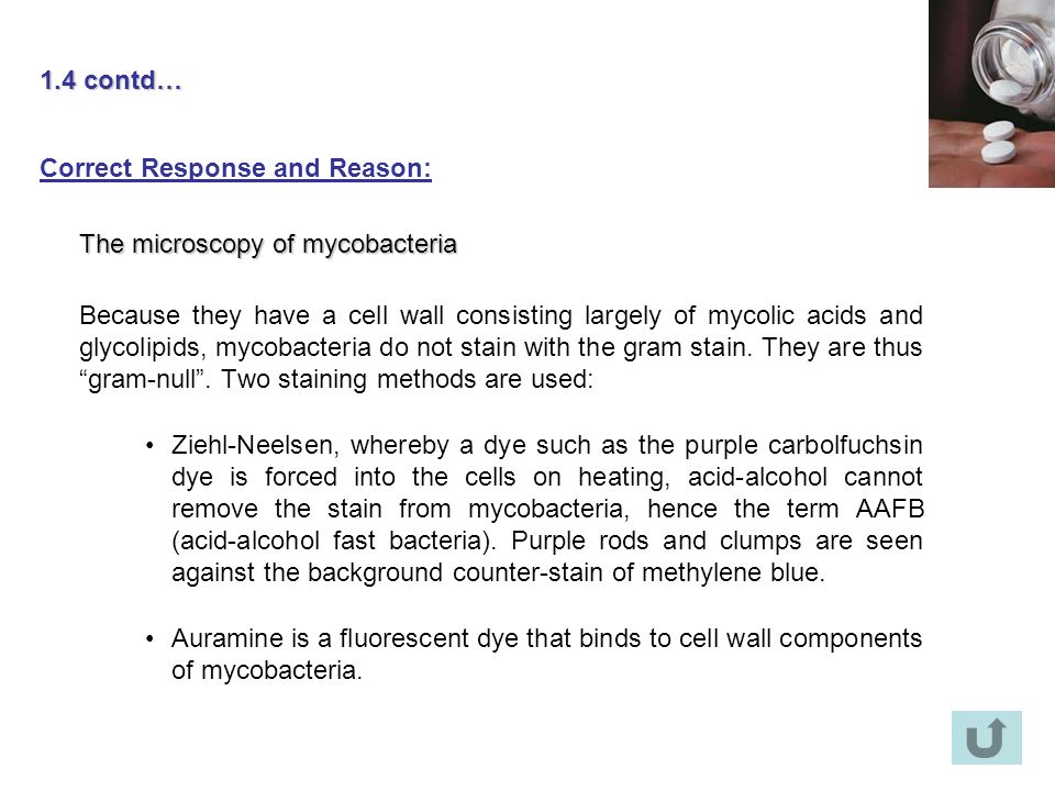 1.4 contd… Correct Response and Reason: The microscopy of mycobacteria.