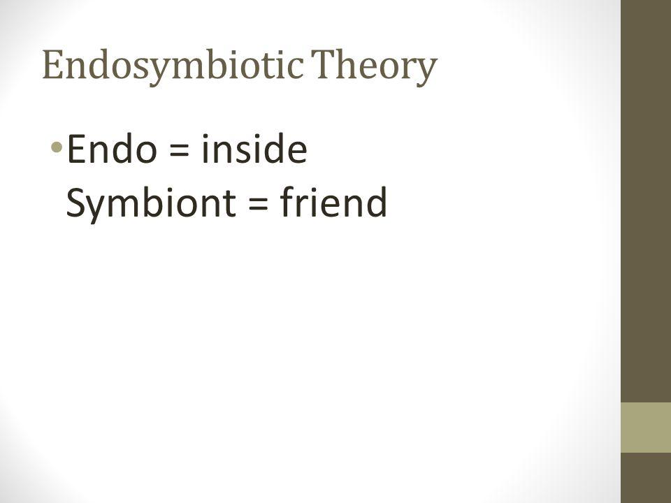 Endo = inside Symbiont = friend