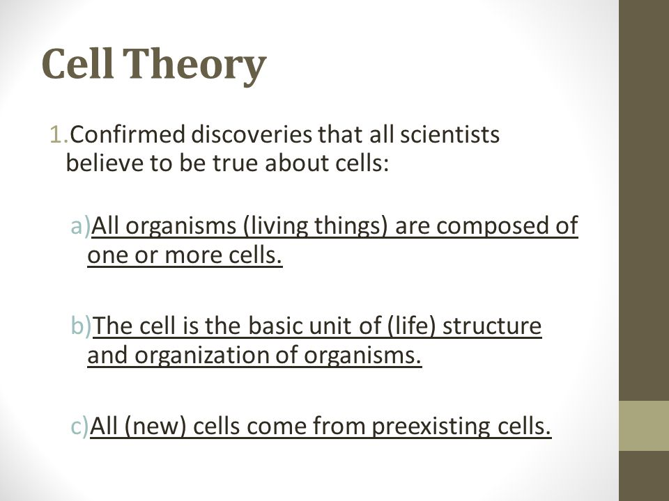 Cell Theory Confirmed discoveries that all scientists believe to be true about cells:
