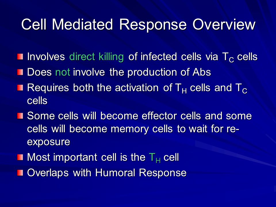 Cell Mediated Response Overview