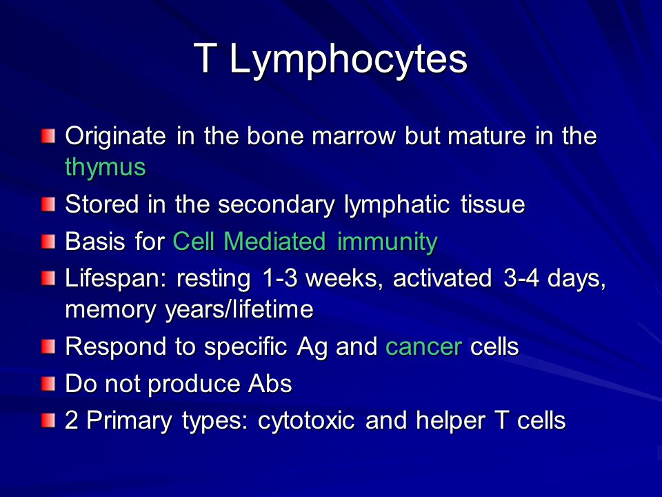 T Lymphocytes Originate in the bone marrow but mature in the thymus