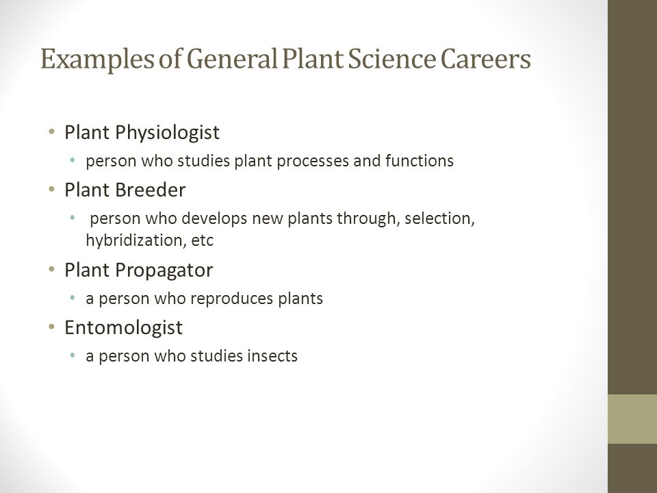 Examples of General Plant Science Careers