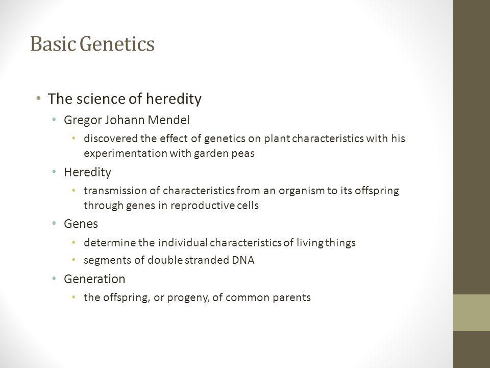 Basic Genetics The science of heredity Gregor Johann Mendel Heredity