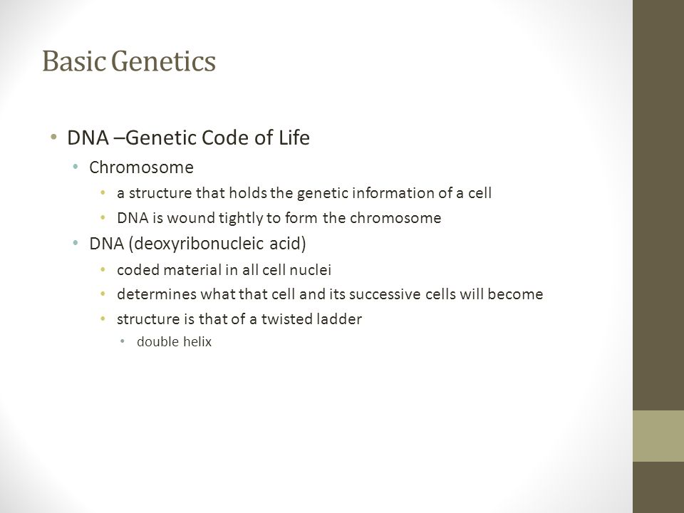 Basic Genetics DNA –Genetic Code of Life Chromosome