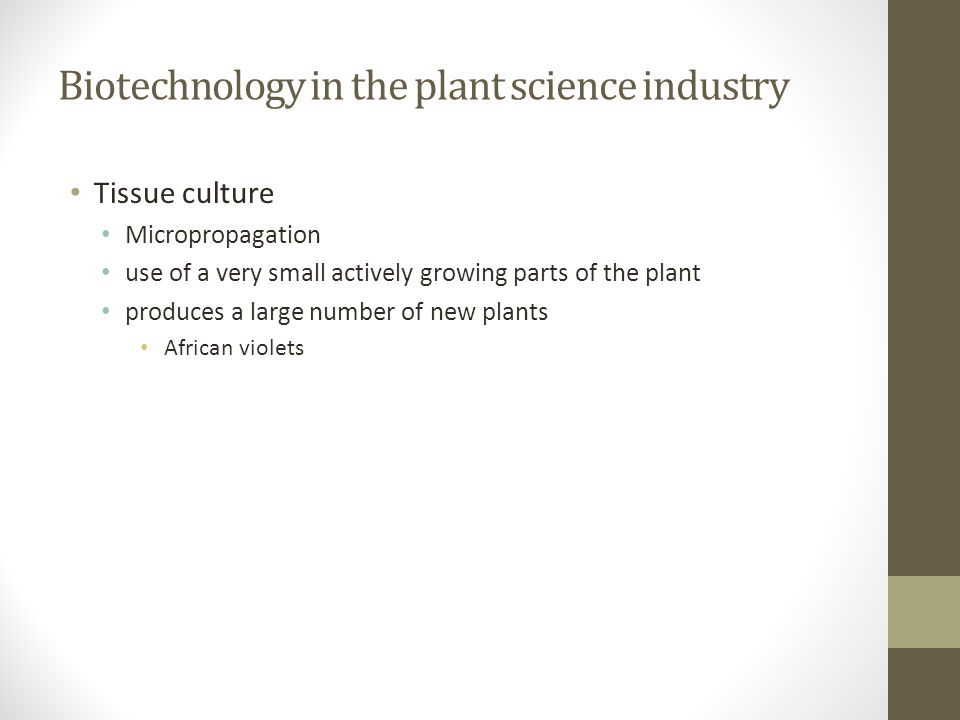 Biotechnology in the plant science industry