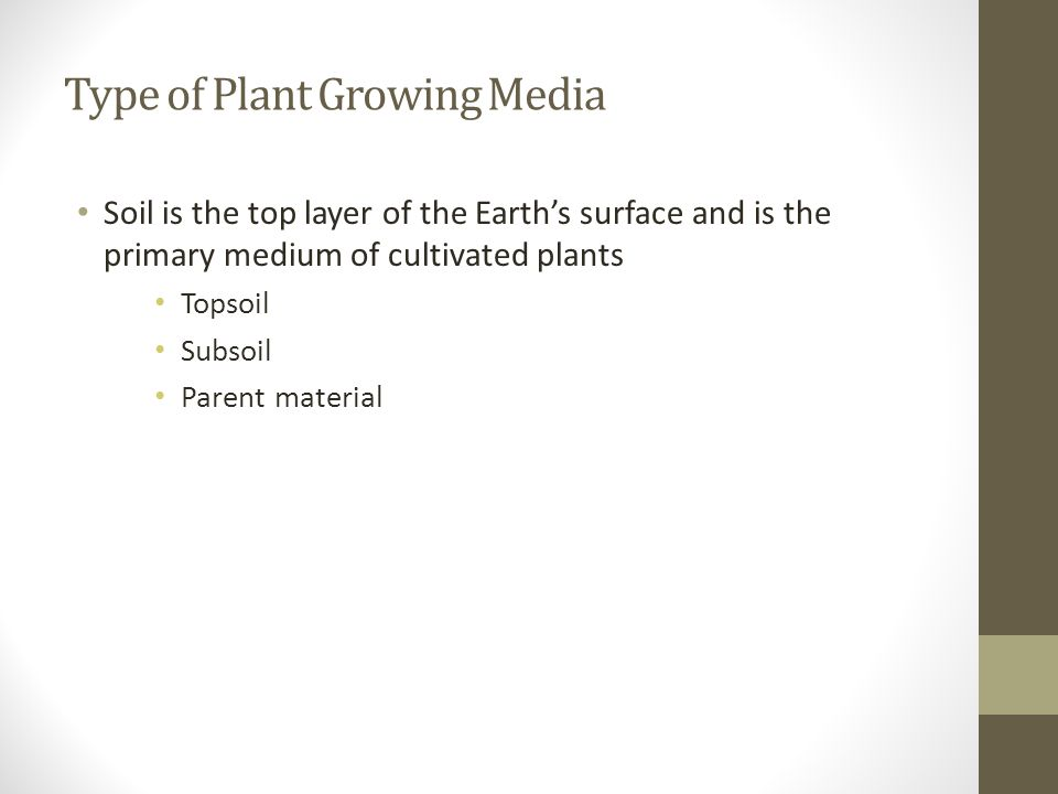 Type of Plant Growing Media