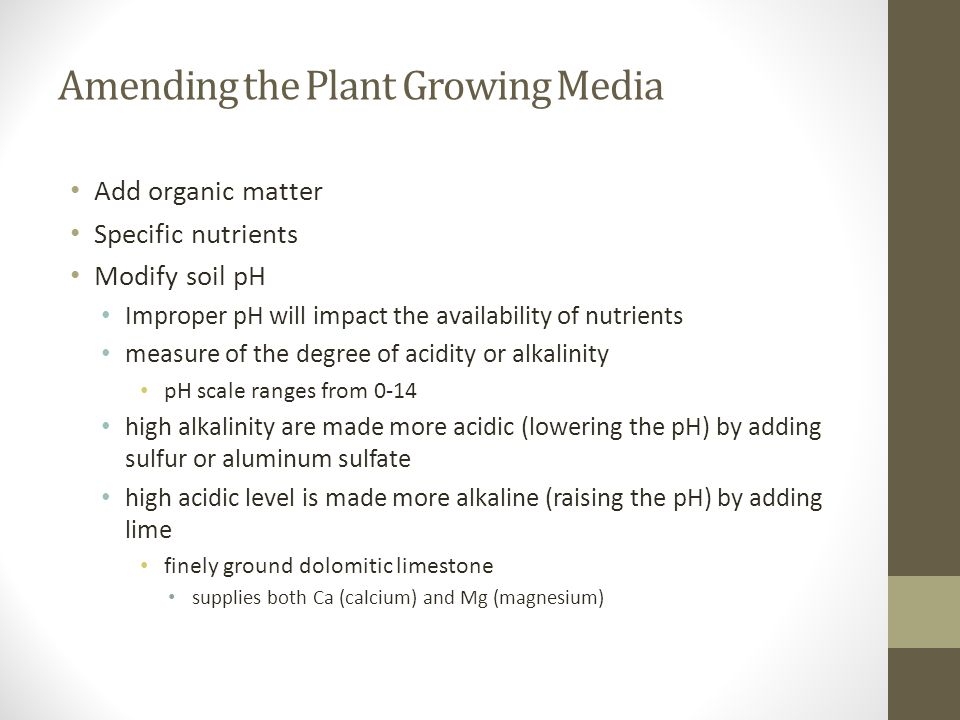 Amending the Plant Growing Media