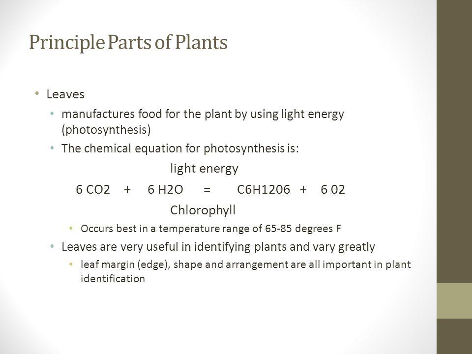 Principle Parts of Plants