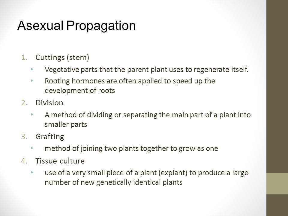 Asexual Propagation Cuttings (stem) Division Grafting Tissue culture