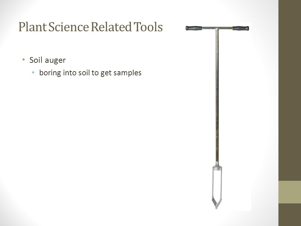 Plant Science Related Tools