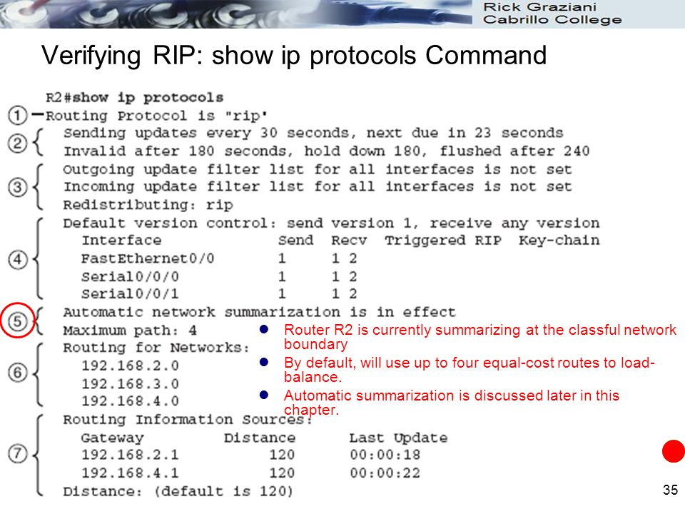 Verifying RIP: show ip protocols Command