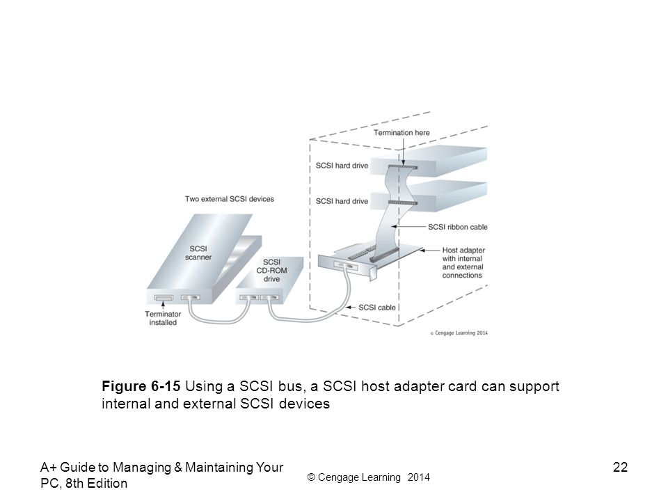 Figure 6-15 Using a SCSI bus, a SCSI host adapter card can support internal and external SCSI devices