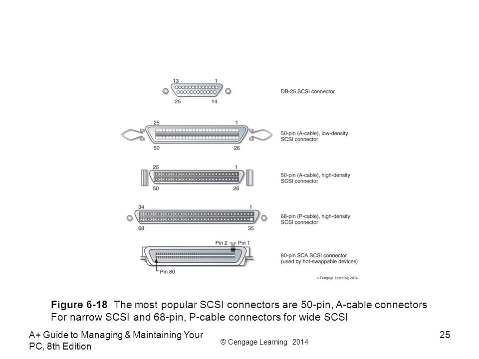For narrow SCSI and 68-pin, P-cable connectors for wide SCSI