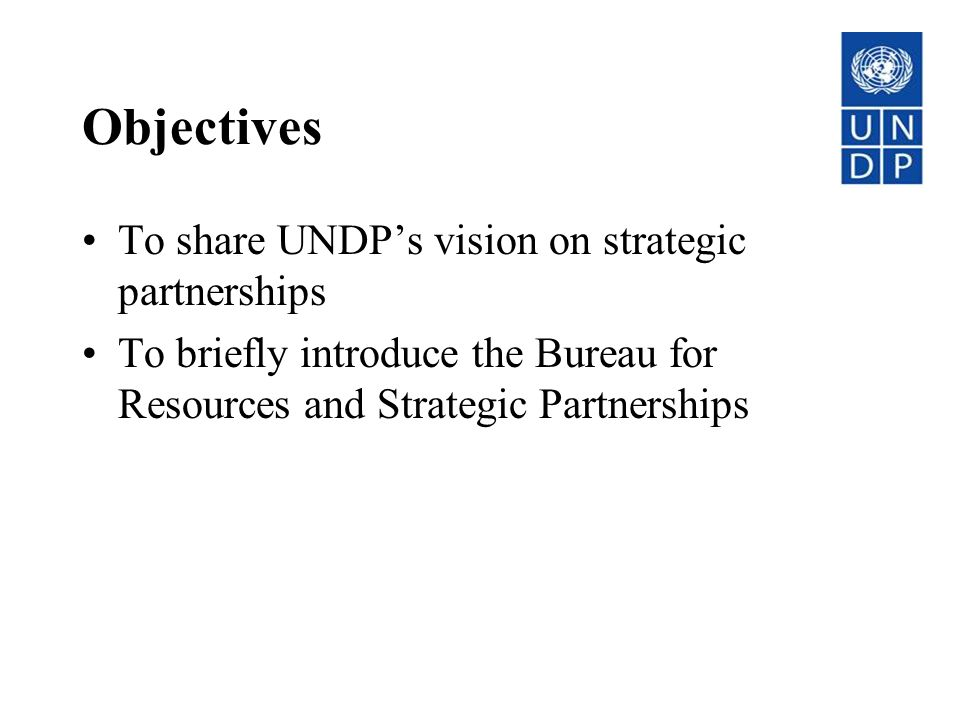Objectives To share UNDP's vision on strategic partnerships