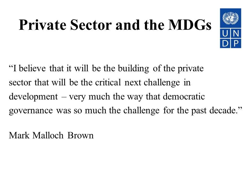 Private Sector and the MDGs
