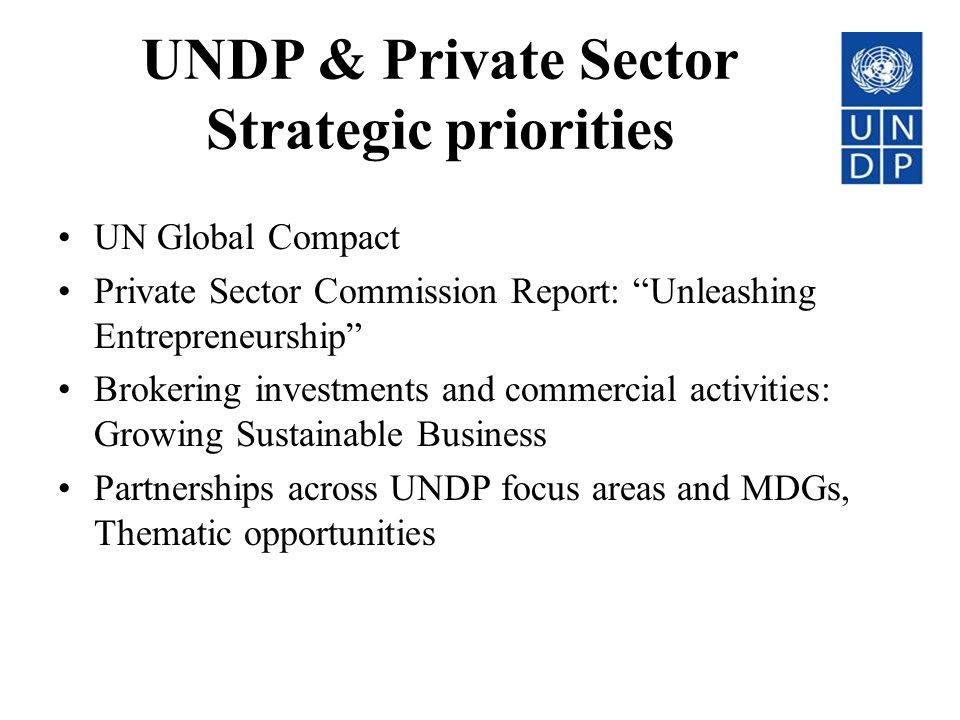 UNDP & Private Sector Strategic priorities