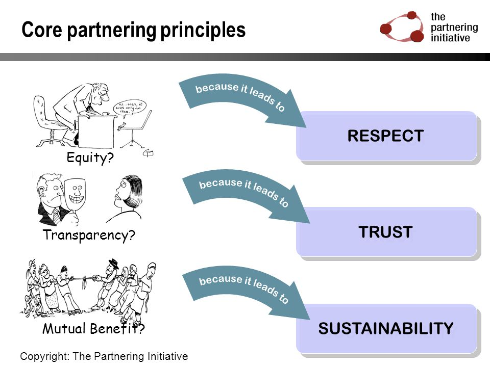 Core partnering principles