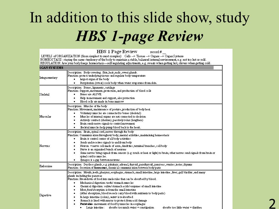 In addition to this slide show, study HBS 1-page Review