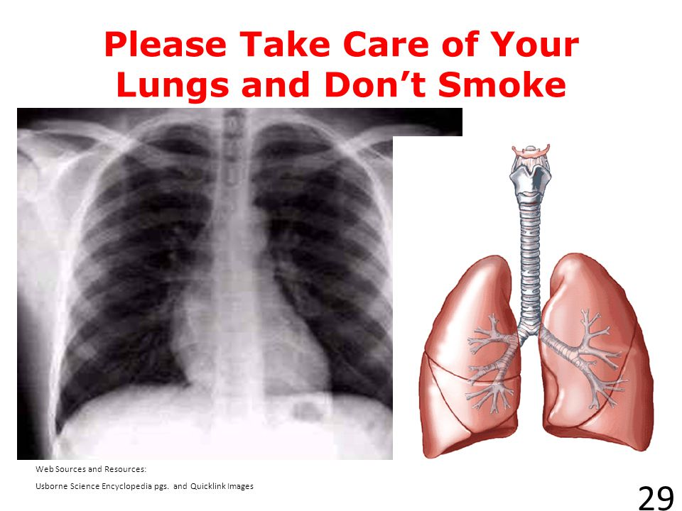 Please Take Care of Your Lungs and Don't Smoke