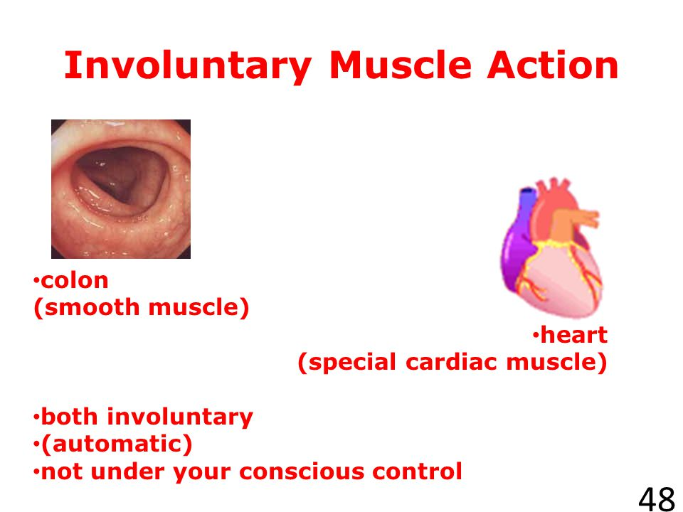 Involuntary Muscle Action