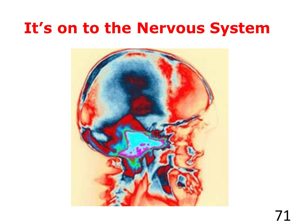 It's on to the Nervous System