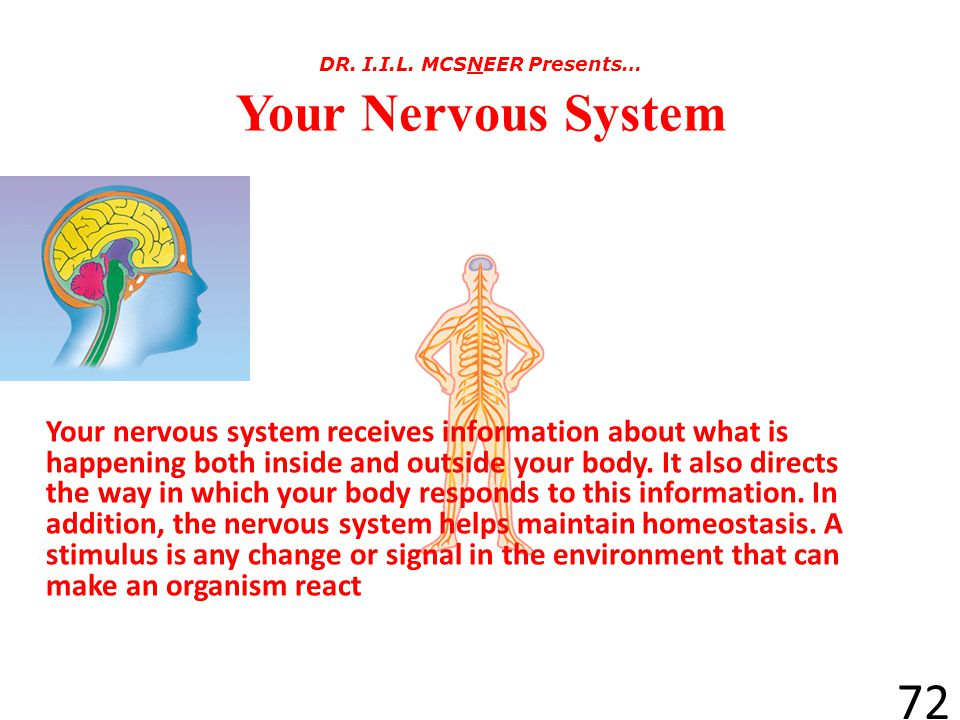 DR. I.I.L. MCSNEER Presents… Your Nervous System
