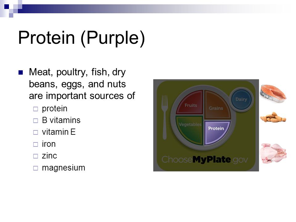 Protein (Purple) Meat, poultry, fish, dry beans, eggs, and nuts are important sources of. protein.