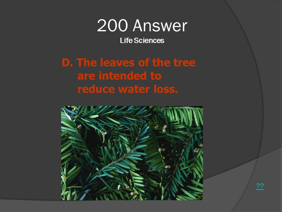 200 Answer Life Sciences D. The leaves of the tree are intended to reduce water loss.