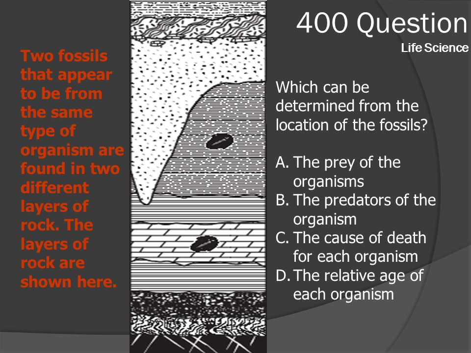 400 Question Life Science