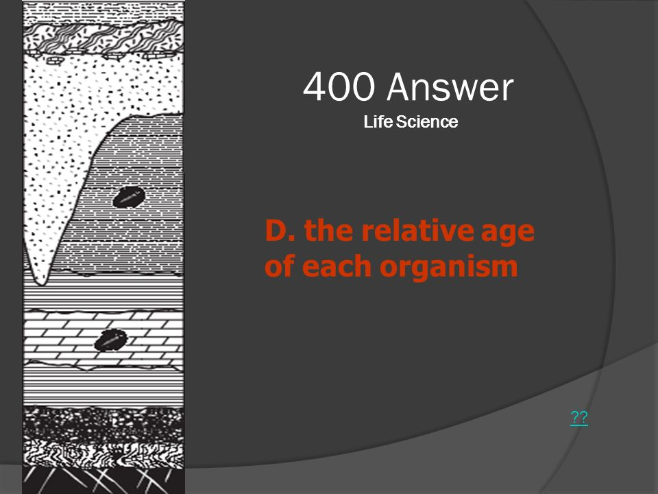 400 Answer Life Science D. the relative age of each organism