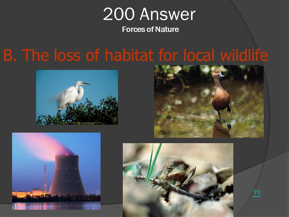 200 Answer Forces of Nature