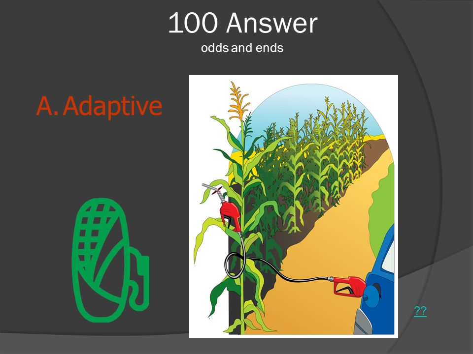 100 Answer odds and ends Adaptive