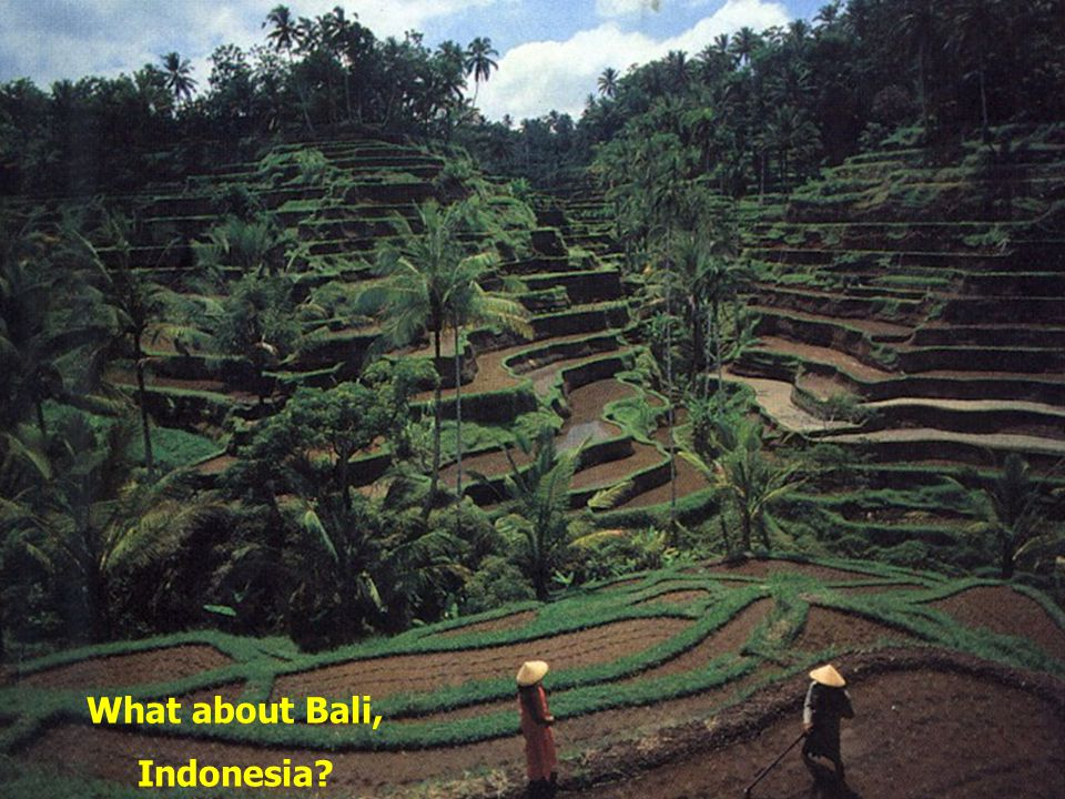 What about Bali, Indonesia