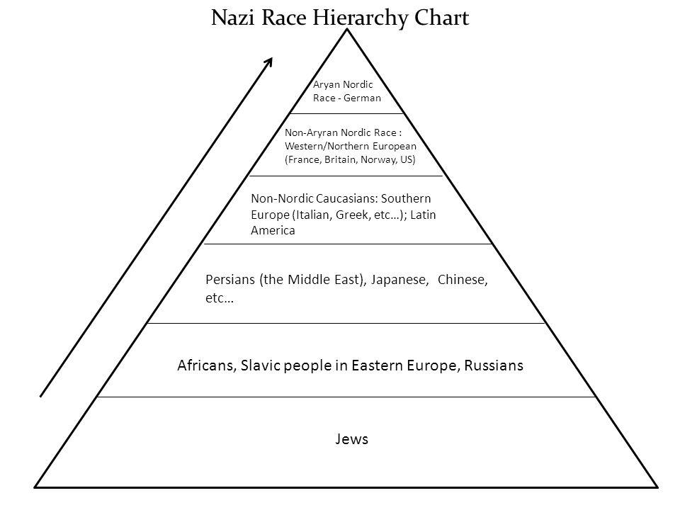 Nazi Race Hierarchy Chart