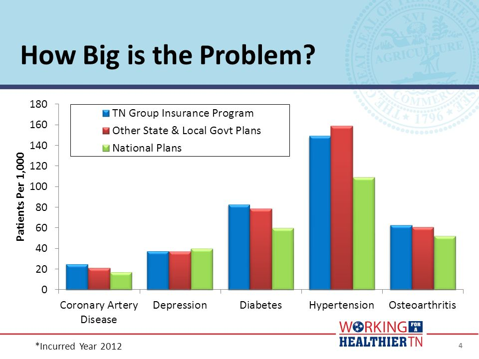 How Big is the Problem *Incurred Year 2012 4