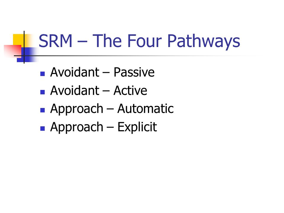 SRM – The Four Pathways Avoidant – Passive Avoidant – Active