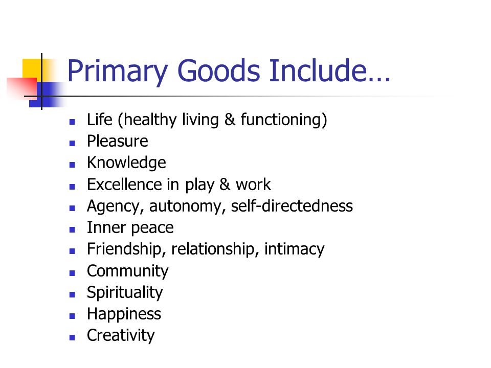 Primary Goods Include…