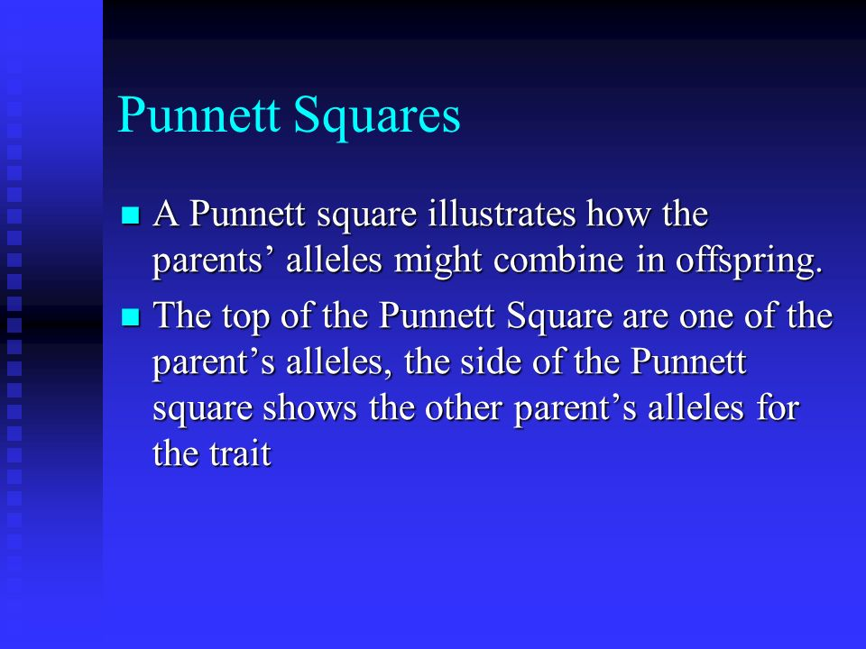 Punnett Squares A Punnett square illustrates how the parents' alleles might combine in offspring.