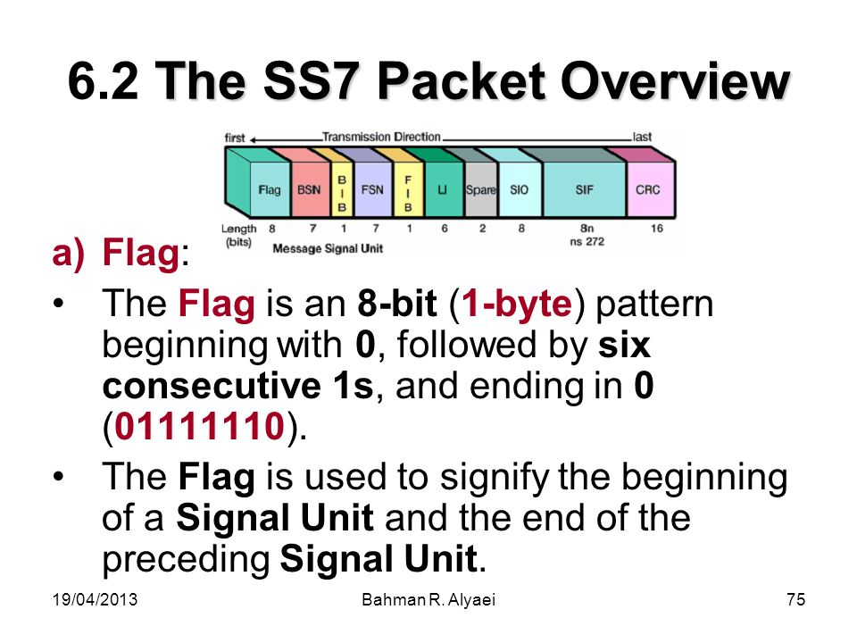 6.2 The SS7 Packet Overview Flag: