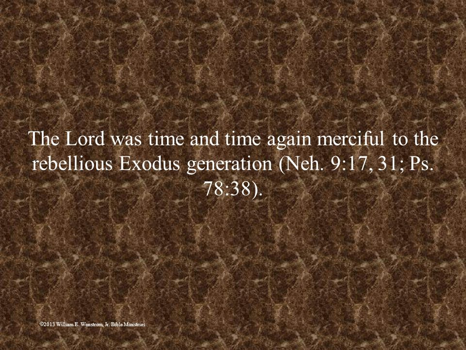 The Lord was time and time again merciful to the rebellious Exodus generation (Neh. 9:17, 31; Ps. 78:38).
