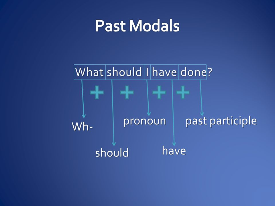 Past Modals What should I have done pronoun past participle Wh- have