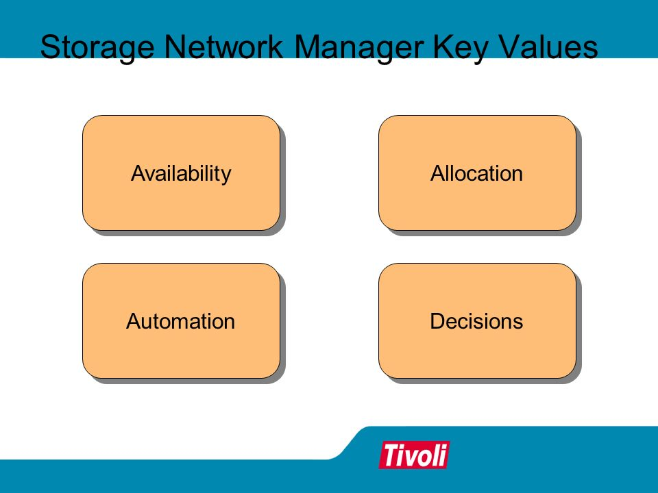 Storage Network Manager Key Values