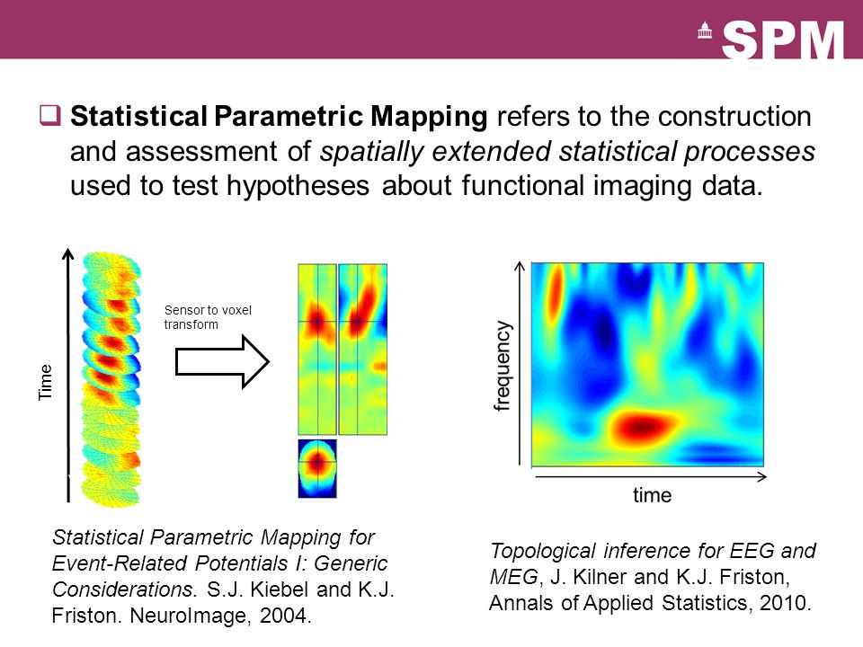 Statistical Parametric Mapping refers to the construction and assessment of spatially extended statistical processes used to test hypotheses about functional imaging data.