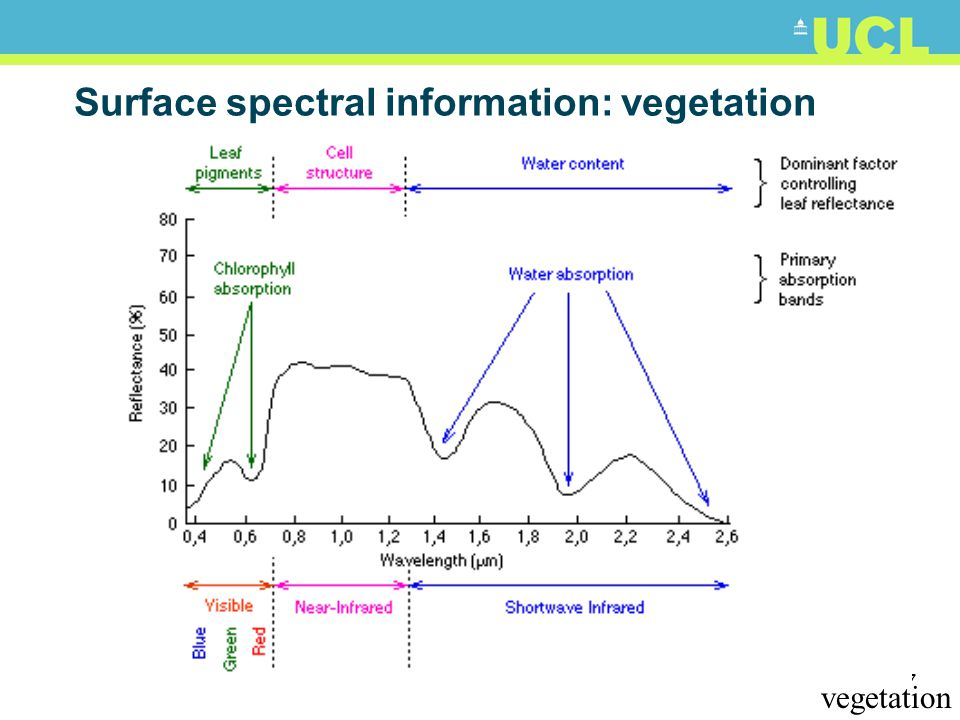 Surface spectral information: vegetation