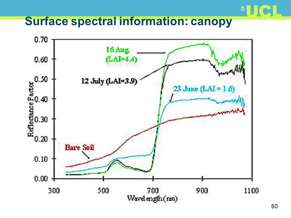 Surface spectral information: canopy