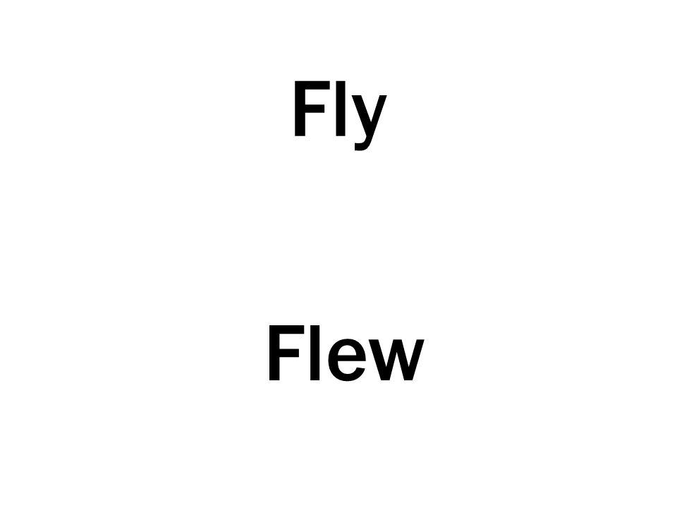 Fly Flew