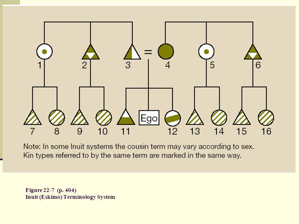 Figure 22-7 (p. 404) Inuit (Eskimo) Terminology System